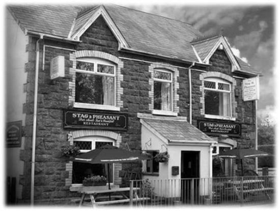 the stag and Pheasant inn: The stag