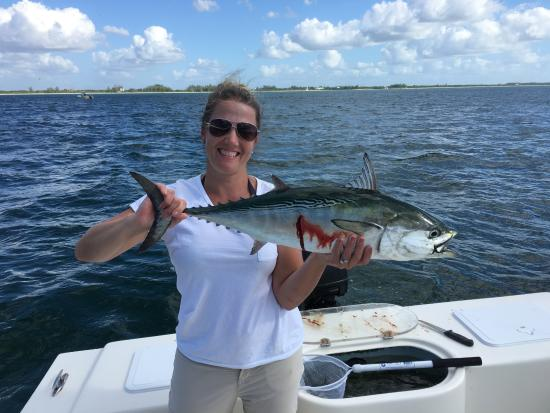 nice fish bonita picture of ms b haven fishing eco charters