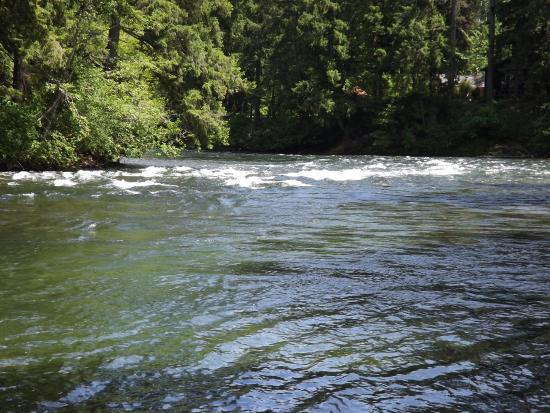 Courtenay, Canadá: Swift moving Puntledge River