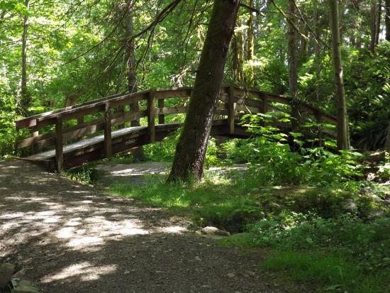 Courtenay, Canada : Bridge in Puntledge Park