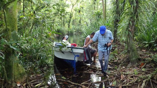 Kosrae, Mikronesiens Forenede Stater: After boating through the mangrove channels we disembark.