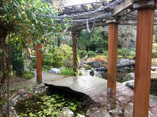 MoonDance Inn: Loved the koi pond with waterfall & beautiful garden area.