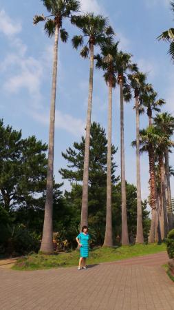 The Shilla Jeju: 산책로의 엄마