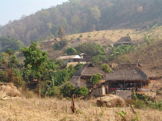 Doi Mae Salong