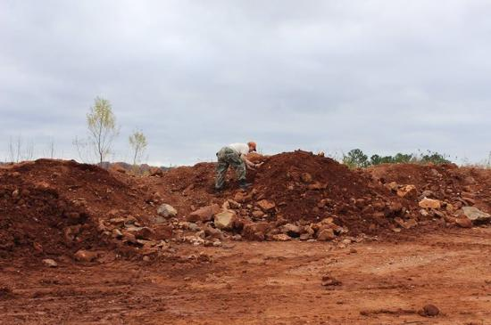 Jessieville, AR: Front end loaders bring bucket loads up from the mine.  All you have to do is dig!!