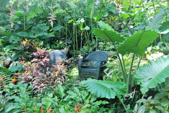 Hunte's Gardens: one of the comfy seating areas in the midst of the garden - great for relaxing or picnicking