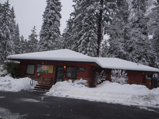 Mount Shasta Resort: Sauna