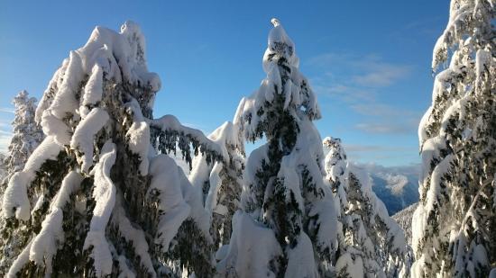 นอร์ทแวนคูเวอร์, แคนาดา: DSC_0936_large.jpg