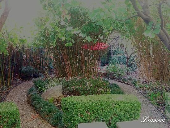 Zcamera 20160107 212911 Peace Awareness Labyrinth And Gardens Tripadvisor