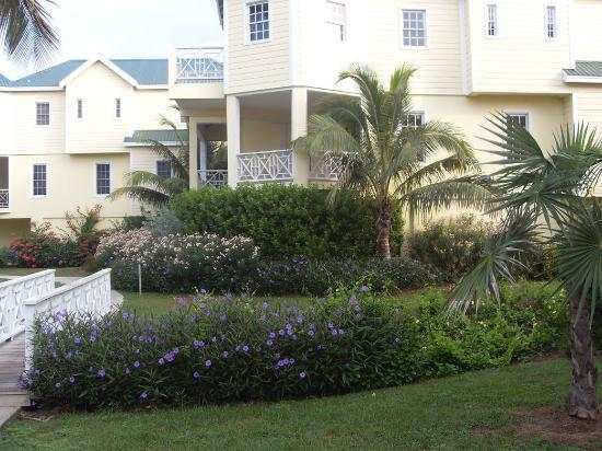 Nelson Spring Beach Resort: The Garden