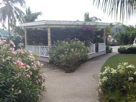 Nelson Spring Beach Resort: The Gazebo