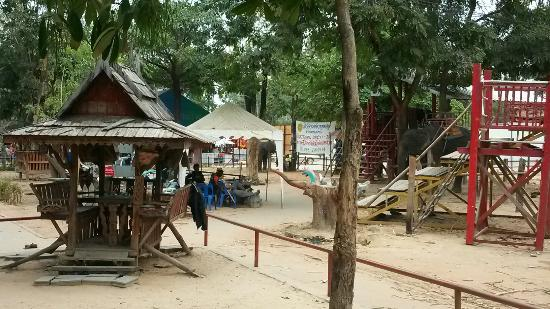 Tha Tum, Tailândia: 20160108_131126_large.jpg