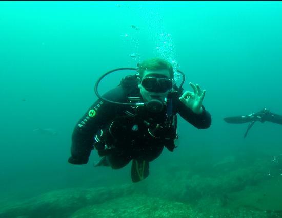 Shelly Beach, Sudafrica: First dive as an open water diver