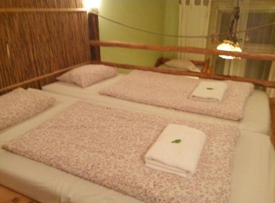 佩西恩藝和諧旅館照片