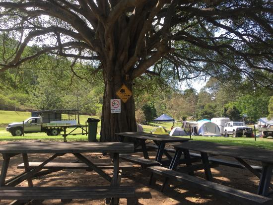 Woodford, Australien: photo4.jpg