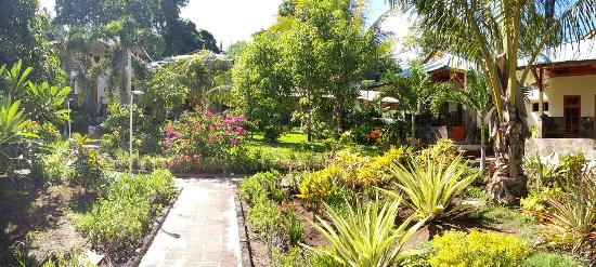 Bunaken Beach Resort: hotel garden
