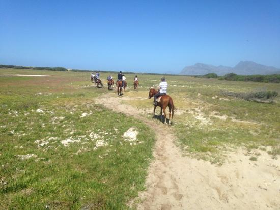 Equestrian Centre Overstrand