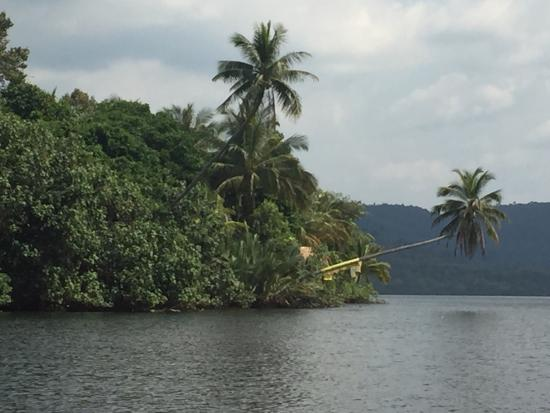 4 Rivers Floating Lodge: photo5.jpg