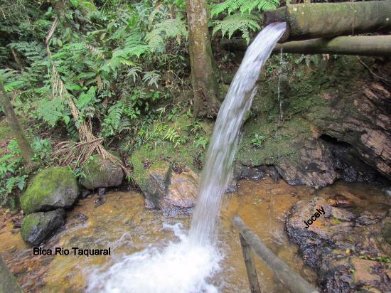 Rio Taquaral Trail