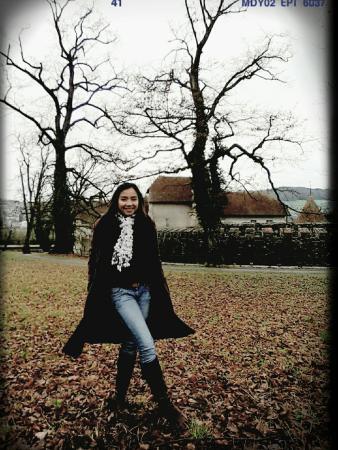 Hallwyl Castle: 16-01-08-09-33-09-502_deco_large.jpg