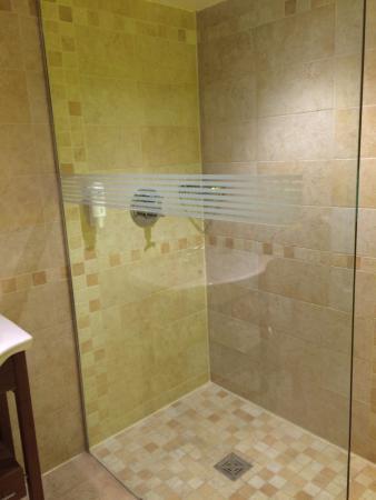 Guy's Thatched Hamlet: Wet room shower