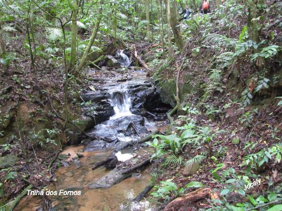Sao Miguel Arcanjo, SP: trail