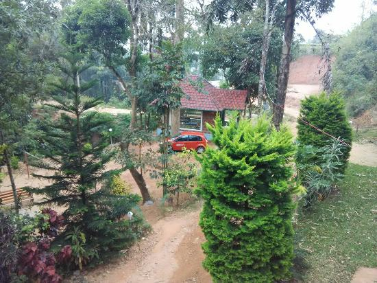 Forest Valley Holidays: Asomewe place... middle of the Forest... Do visit when ur planning for coorg.