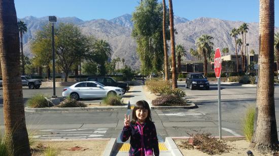 Quality Inn Palm Springs: Palm Spring