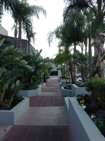 Hilton Los Angeles/Universal City: Walkway