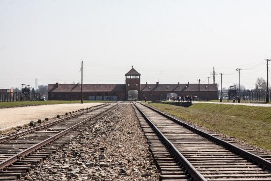 Krakow Auschwitz Transfers and Tours