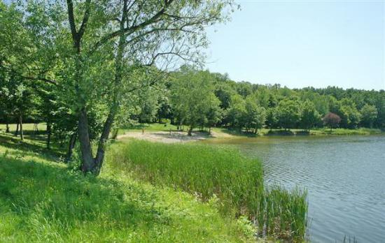 Lake Beregi-to