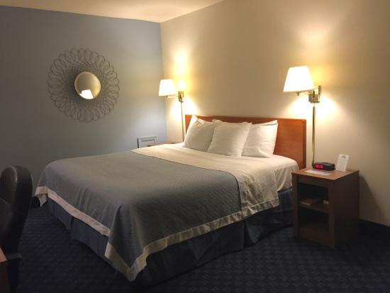 Doylestown Mainstreet Inn: Room, bed view