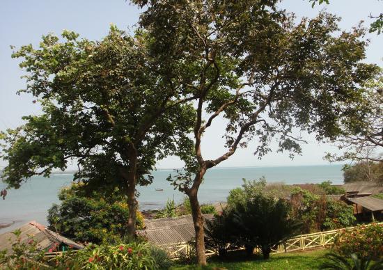Stonewater Eco Resort: Lush landscape