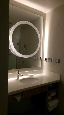 SpringHill Suites by Marriott Macon: sink