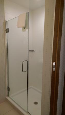 SpringHill Suites by Marriott Macon: shower