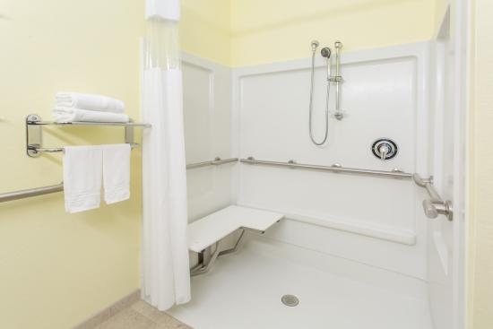 Lehigh Acres, FL: Handicap Guest Bathroom with Roll-in Shower