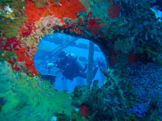 Gran Scuba Diving : Cozumel