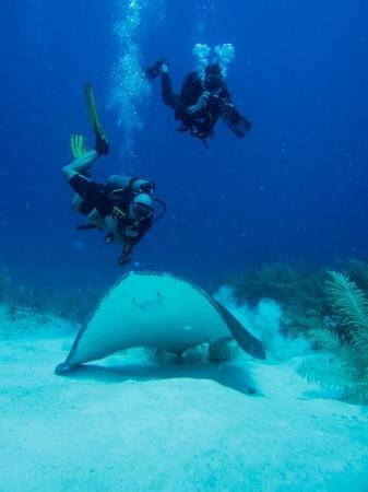 Gran Scuba Diving : Puerto Morelos