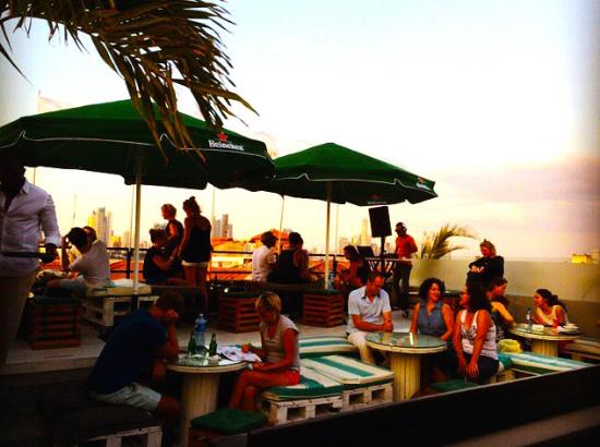 Gatto Blanco Rooftop club
