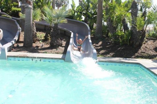 Hyatt Regency Huntington Beach Resort Spa Family Pool