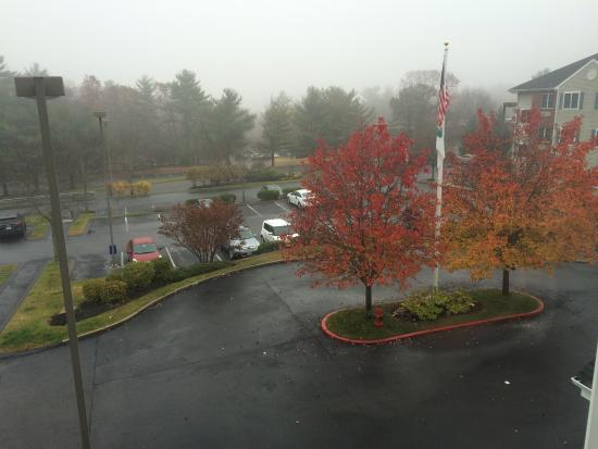 Andover, MA: View from Room