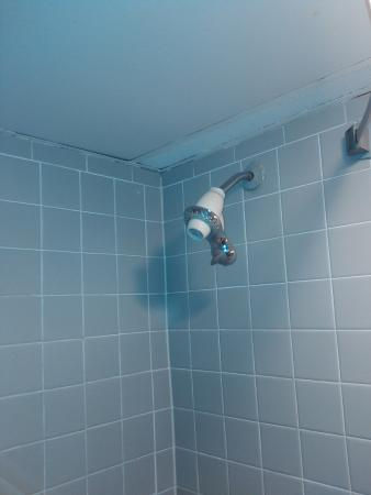Ramada Batesville: shower ceiling