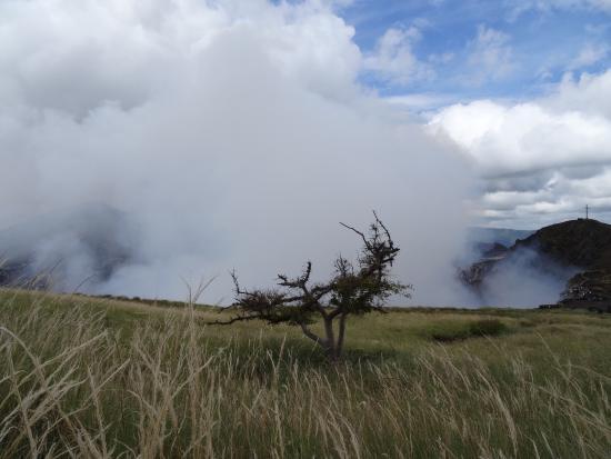 Masaya Volcano National Park: View of the Masaya crater and plume