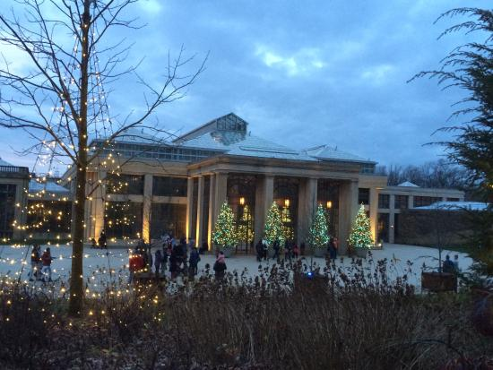 Longwood Gardens Christmas Lights On Tall Trees 2015 Picture Of Longwood Gardens Kennett