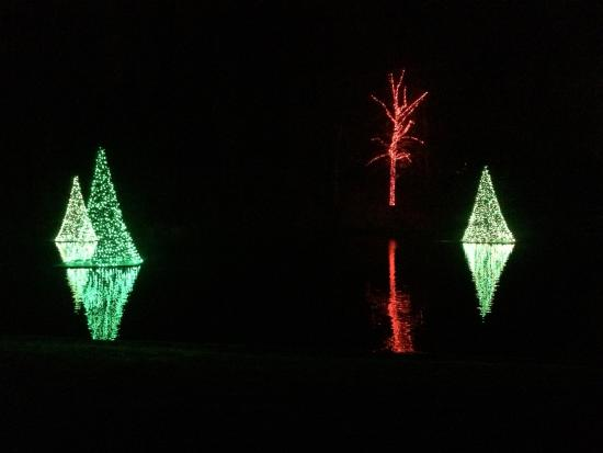 longwood gardens christmas lights reflecting on the water - Longwood Gardens Christmas Lights