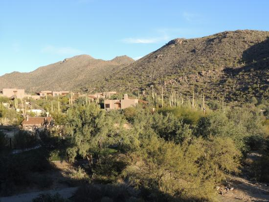 The Ritz-Carlton, Dove Mountain: The resort from Antonio Trail