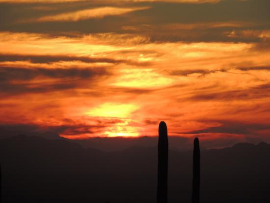 The Ritz-Carlton, Dove Mountain: Sunset from Cayton's
