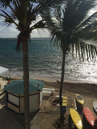 Divi Carina Bay All Inclusive Beach Resort: Outside of our room
