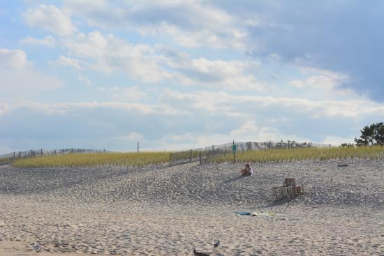 20160214 134221 picture of delaware seashore for Rehoboth beach fishing