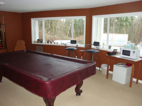 Country Aire Bed and Breakfast: Pool Table